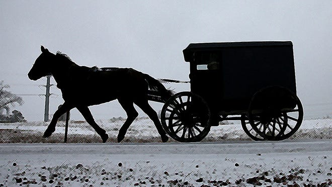 MECHANICSVILLE, MD - JANUARY 21: A horse pulls an Amish buggy during a snowfall January 21, 2014 in Mechanicsville, Maryland. A strong winter storm is bearing down on the East Coast between Virginia and Massachusetts and could dump four to eight inches of snow on the Washington area. (Photo by Mark Wilson/Getty Images)