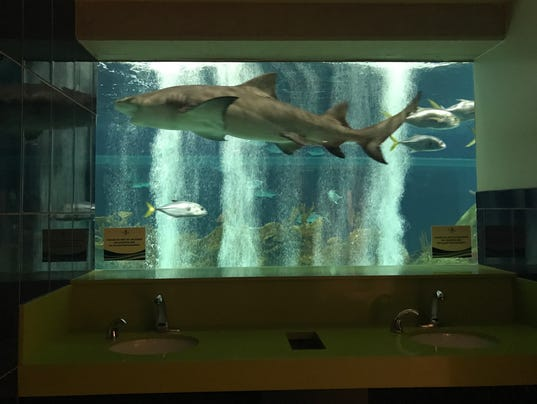 OdySea Aquarium bathroom