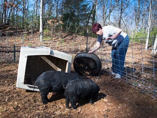 Mary Carrion gets clean water for pigs on her farm