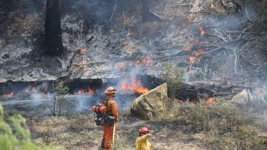 The 2015 Lake Fire burned 31,359 acres of the San Bernardino Mountains between June and August.