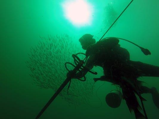 NDN0916-Spearfishing 1.JPG Jump Photo Lede