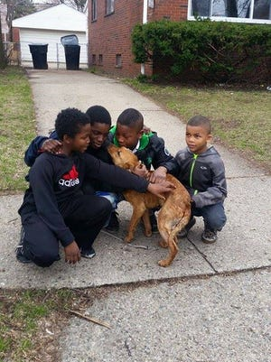 Detroit boys Andrew Daniels, 7, Kevin Dancy 7, Kenneth Dancy 11, and Kenny Dancy, 13, received an award from People for the Ethical Treatment of Animals for rescuing a dog they found behind a building; seen here with the dog March 25.