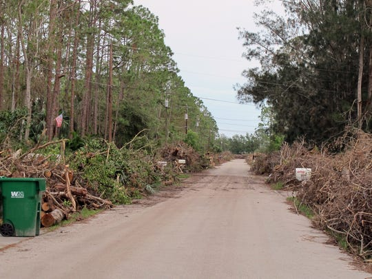 Large piles of trees and brush from Hurricane Irma front every home along English Oaks Lane off Oakes Boulevard in North Naples.