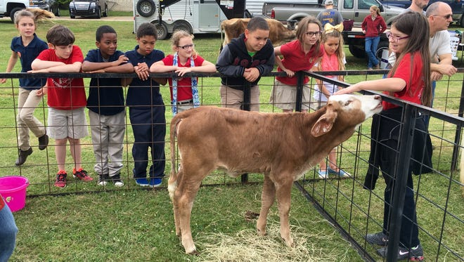 Third-graders from Tioga and Mary Goff elementary schools pet livestock Thursday at Ag Day at Tioga High School.