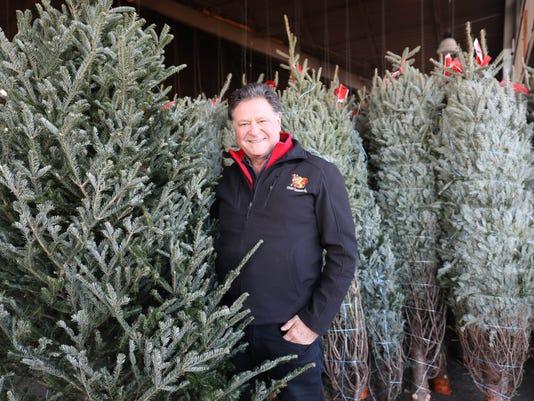 Stew Leonard's Christmas Tree tips