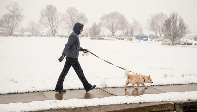 Sandy Gross of York Township walks her 9-year-old dog, Patrick, during a light snowfall on Wednesday. Snowfall accumulation for York County varied after a forecasted nor'easter shifted east, resulting in lower totals than predicted.