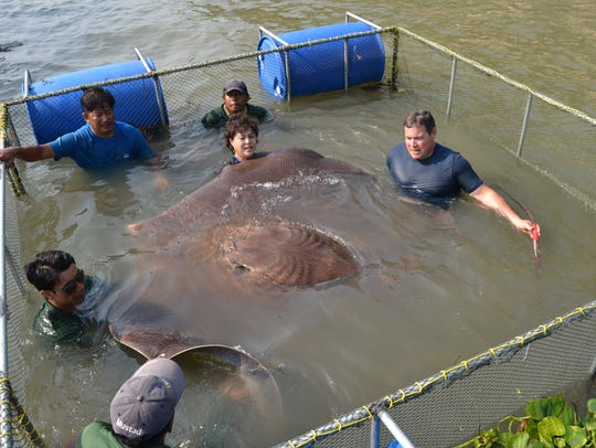 Jeff Corwin (right) and team prepare to release the