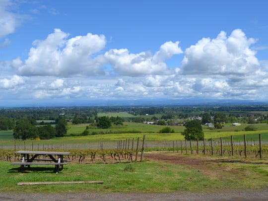 Red Hawk Winery in West Salem, is rustic, charming, and beautiful.