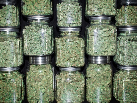Stacked Wall of Glass jars Filled with Green Marijuana Buds