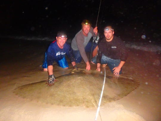 Nick Ianello (left), Nick Honachefsky and Bud Bissey with a butterfly ray in Lavallette Aug. 6 before releasing the ray.