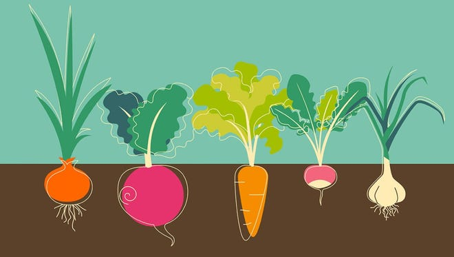 Vegetable gardening is a great stress reliever, plus you get to enjoy the fruits of your labor.