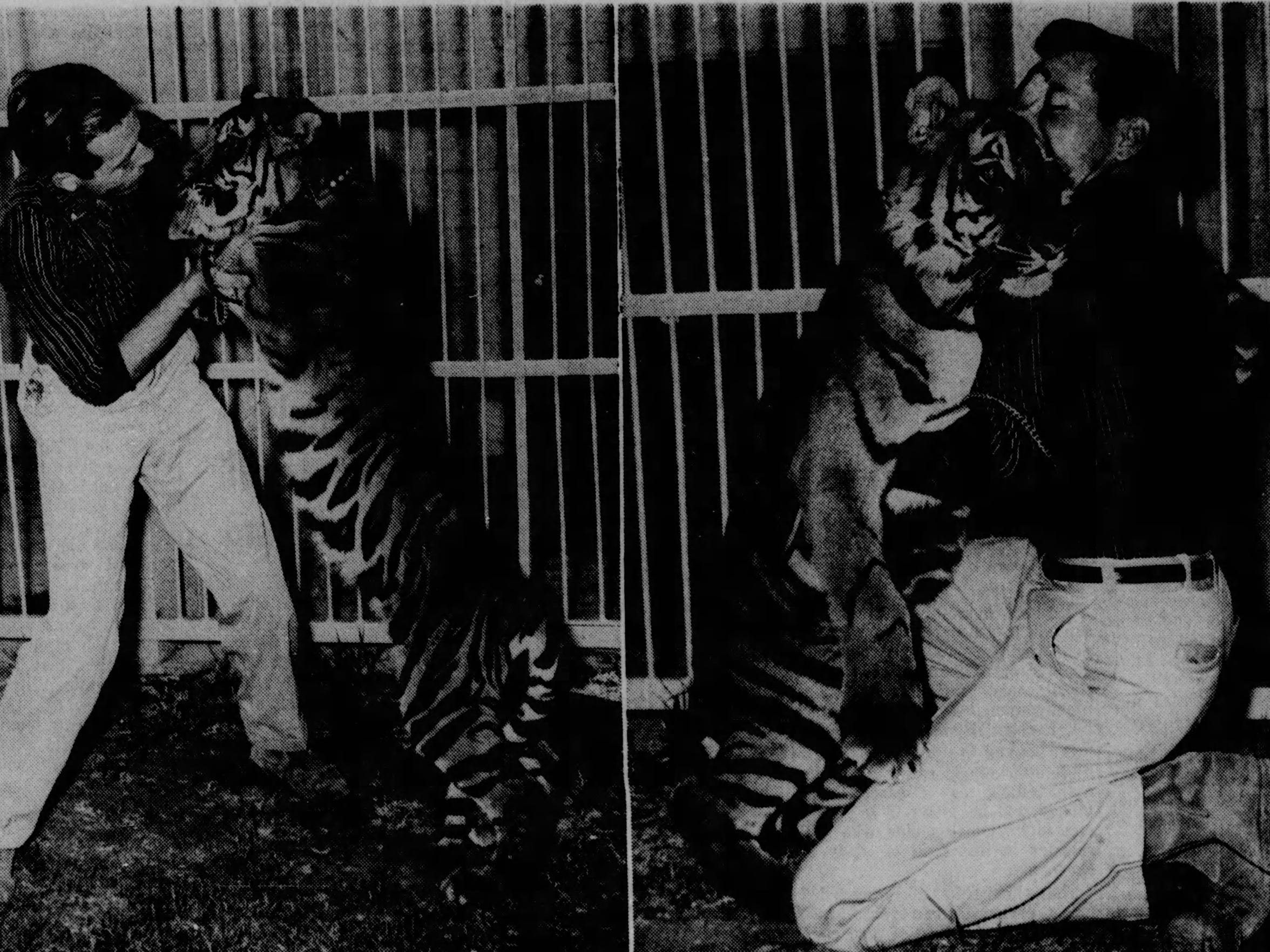 Kit Beecher, then director of Bernstein Park Zoo, plays