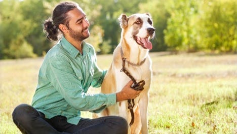 Pet allergens can trigger asthma – but not always.