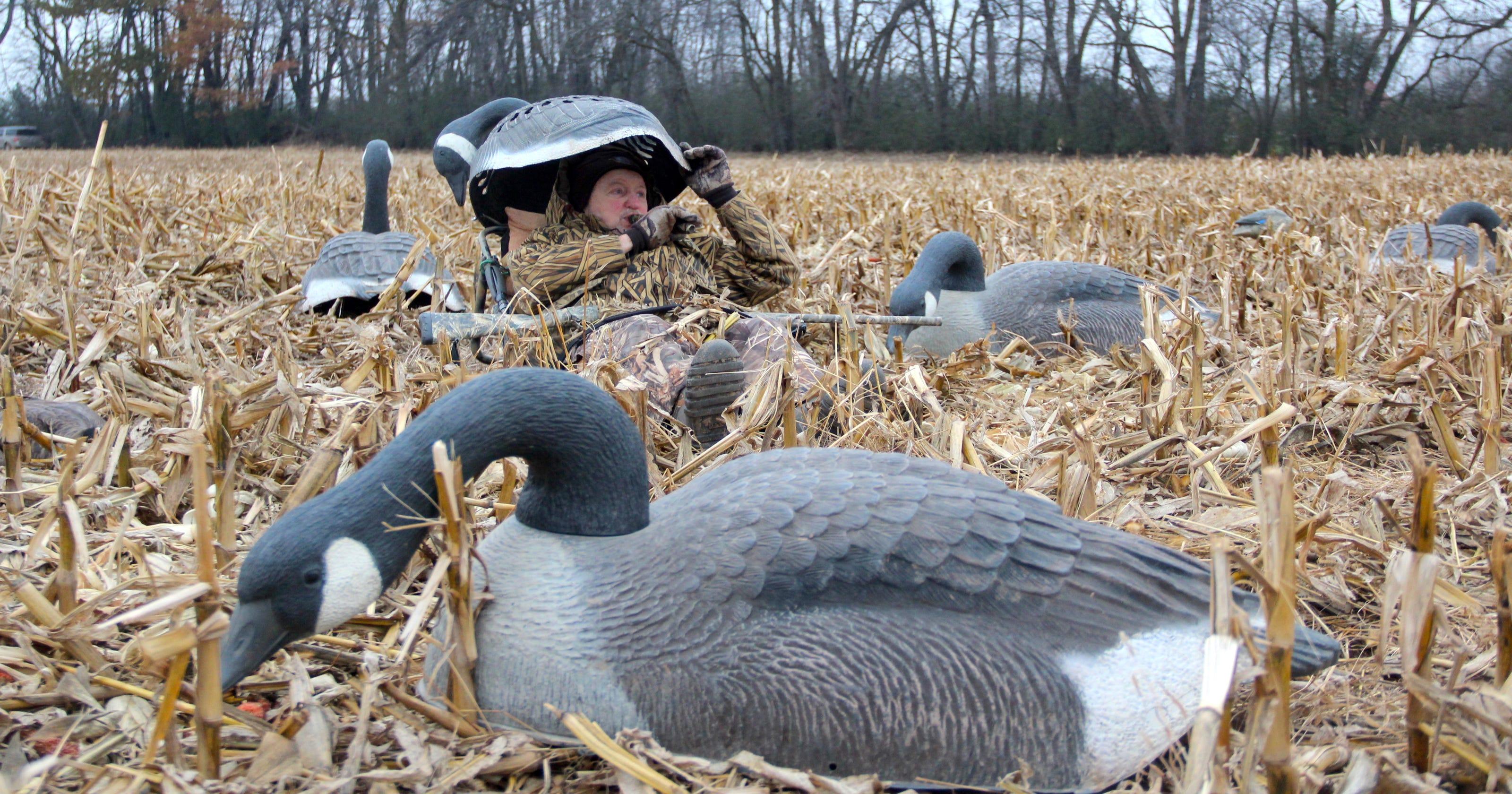 Lov na slikama i videu - Page 3 636495526901793943-Goose-hunt-1