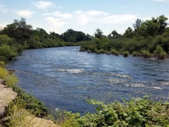 Fresno County sheriff's boating units spent Labor Day searching for a man who reportedly went under in the Kings River.