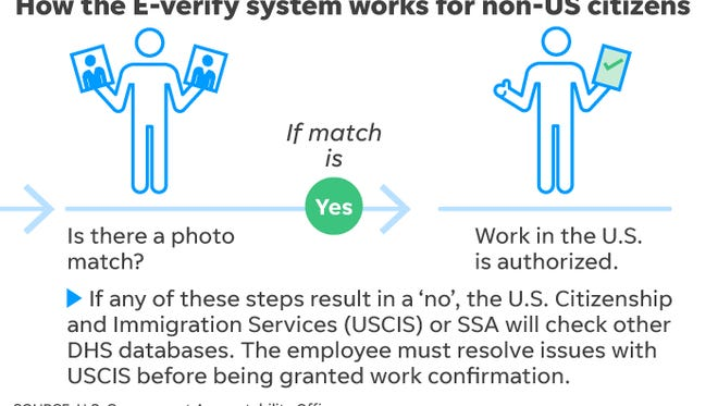 E-verify process