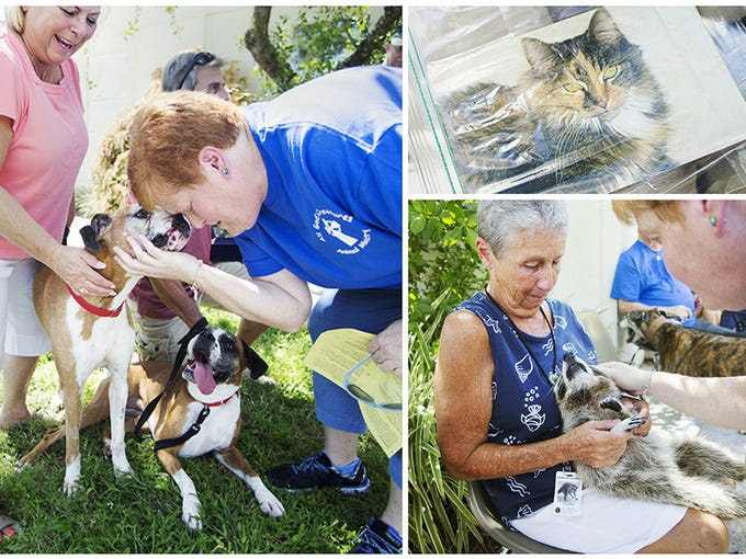 Scenes from the Blessing of the Animals event Sunday