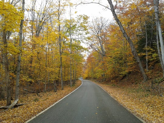 The Tunnel of Trees, located along M-119 in northern Michigan, is photographed during Fall color season, Oct. 22, 2012.
