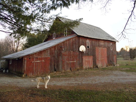 A dog named Mya stood between Gregg Doyel and his goal.
