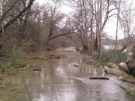 On Wednesday, as the flows in the Sacramento River