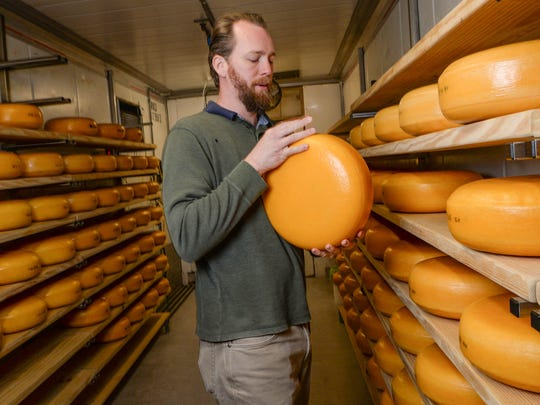 Don Lubsen flips a block of  gouda cheese aging in a refrigerated room at Forx Farm on Dobbins Bridge Road in Anderson on Monday.