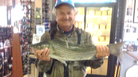 "Bob Faillace was out plugging at jetty and caught a nice 28.5"" striper that he brought into the shop."