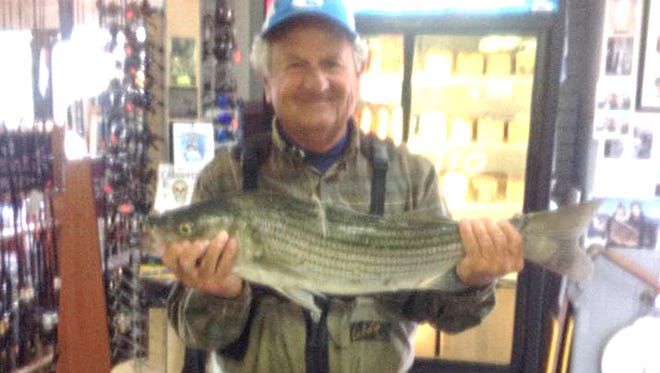 """Bob Faillace was out plugging at jetty and caught a nice 28.5"""" striper that he brought into the shop."""