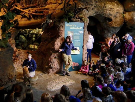 Turtle Bay Exploration Park hosts its animal shows
