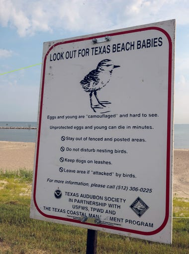 Signs posted during nesting season warn people not to disturb birds on nests.
