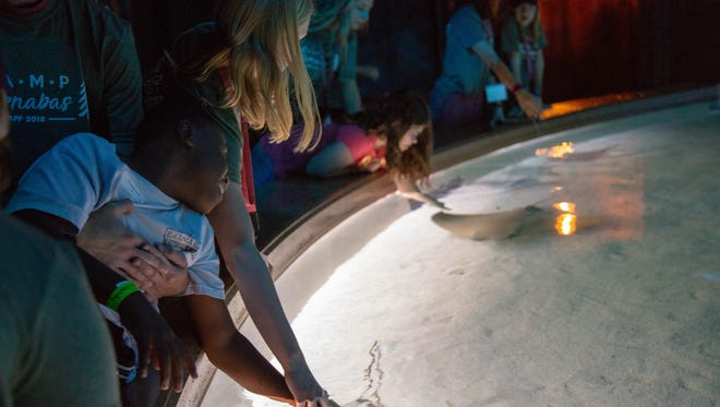Bass Pro Shops and Camp Barnabas teamed up over the weekend to give 20 campers a unique experience — a night at the museum inside the National Wonders of Wildlife Museum & Aquarium.