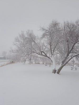 Snow near Larchwood, Iowa.