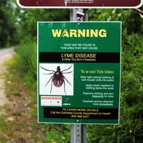 Q&A: Scientist behind The Tick Project fighting Lyme disease in Dutchess, Hudson Valley