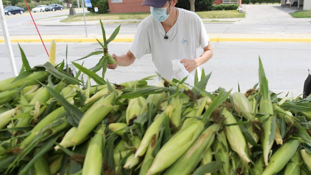 Noah Hoy, an employee of DeMoss Farm, sells sweet corn on Grand Avenue Monday, July 20, 2020, in Ames, Iowa. Photo by Nirmalendu Majumdar