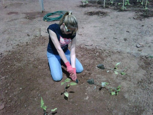 636294954040781868-Pieroth-gardening.jpg