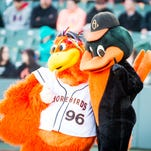 Best beach-related mascots that would fit in on Delmarva
