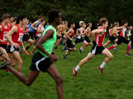 Runners compete in the Greater Valley Conference championship boy's 5K race at the Crystal Lake Sports Park in Corvallis on Wednesday, Oct. 26, 2016. West Salem's Ahmed Muhumed finished first.
