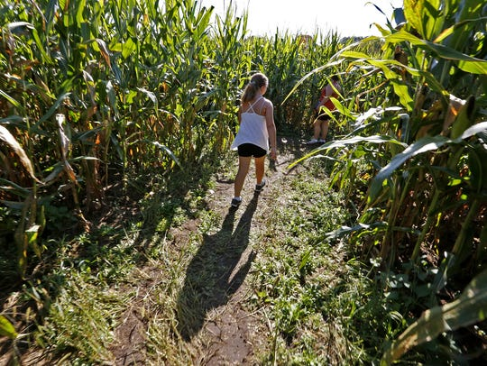 Hoosiers can wander through a Stranger Things-inspired corn maze at Exploration Acres this fall.
