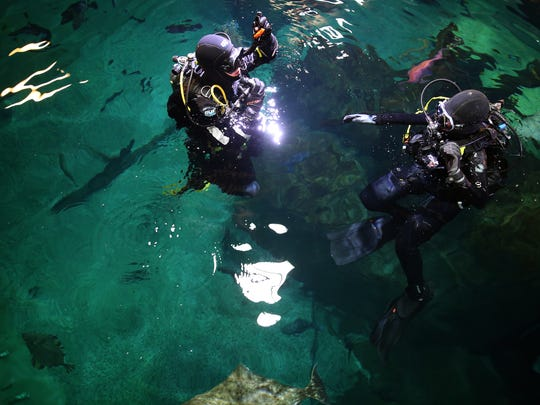 Doug Batson, an assistant dive and boating safety officer, left, and Sally Compton, a public relations coordinator, both with the Oregon Coast Aquarium, prepare for a guest dive in the Halibut Flats exhibit a the Oregon Coast Aquarium in Newport on Thursday, June 21, 2018.
