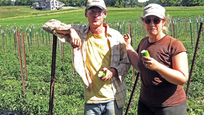Dennis Fiser and Anne Drehfal have incorporated some unique methods into their farm in order to market produce at farmers markets, through a CSA and the wholesale market.