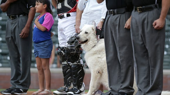 Sunday night was a Bark at the Park night at Southwest University Park as the Chihuahuas take on Las Vegas.