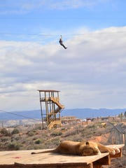 Riders on the zip line at Out of Africa Wildlife Park in Camp Verde.