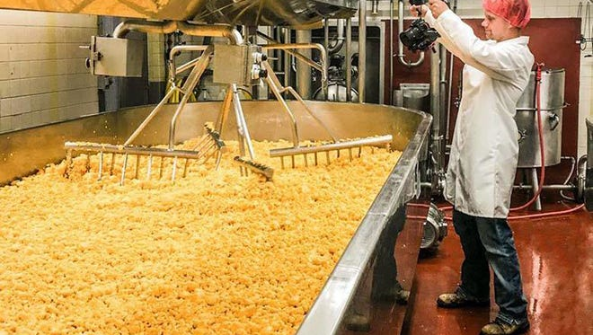 A virtual tour will take Farm Technology Days visitors behind the scenes at Nasonville Dairy, a world renowned cheese manufacturing plant that ships its products to all 50 states and to many other countries overseas.