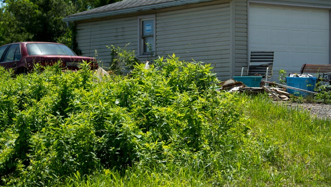 Warrick County now has an ordinance to combat residents' complaints of rank vegetation, abandoned cars, dangerous materials, junked appliances or trash. The new Public Nuisance Violation Report Form can be found at the county's website www.warrickcounty.gov.