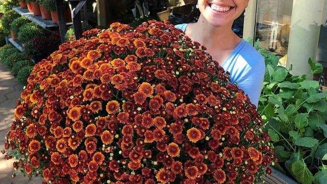 Winnie Smith at Mitchell Hardware on Craven Street in New Bern displays mums during the 2019 MumFest. While the festival has many changes this year, mums will again be central.