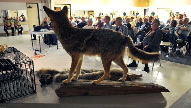 Crowds pack a meeting on Urban Coyotes & Coyote safety held at the Gleason Park Community Center in Indian Harbour Beach.