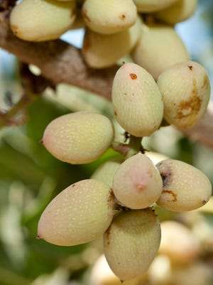 A Tulare County pistachio grower is attempting to settle a lawsuit alleging the company failed to pay workers up to three minutes of pay each workday.