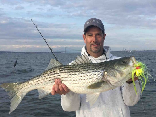 Striped bass run turns into frenzy with hundreds of boats for Matthews fishing report