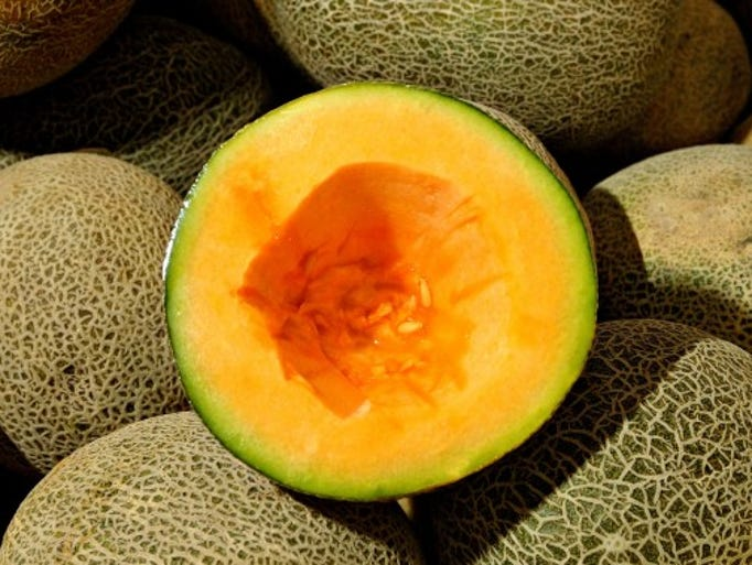 the taste of melon by borden Taste of watermelon the taste of watermelon is a story written by borden deal and it is narrated in first person by a 16 year old boy who has just moved from the town to the countryside and has a crush on willadean wills.