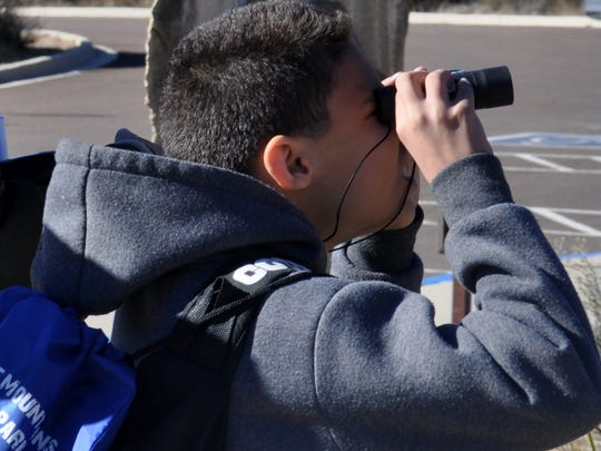 Isaac McCraw, 11, looked at a pair of phainopepla outside the Pine Springs Visitor Center.