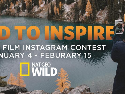 Wild To Inspire Film Contest